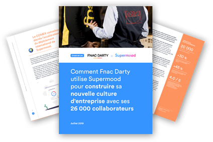 Image Case Study Fnac Darty trois pages high def
